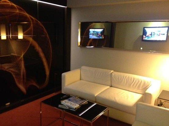 โรงแรมพาร์ค พลาซ่า เวสต์มินสเตอร์บริจด์ ลอนดอน:                   Living Room