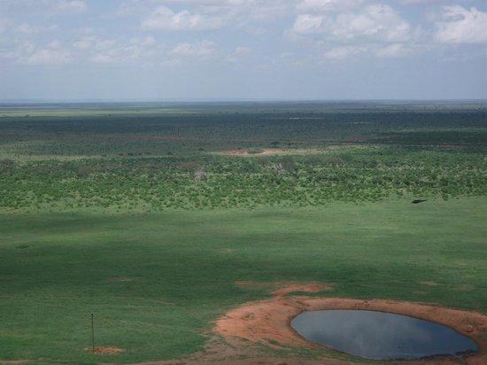 Voi Safari Lodge:                   amazing view