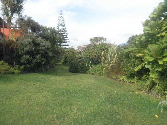 Moanarua Beach Cottage B&B:                   Beautiful garden