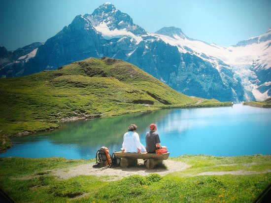Hotel Edelweiss: Jungfrau Region