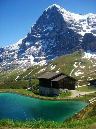 Hotel Edelweiss: Eiger