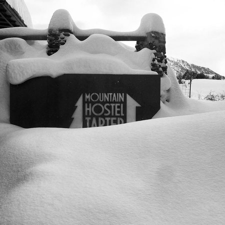 Mountain Hostel Tarter:                   Exterior 1