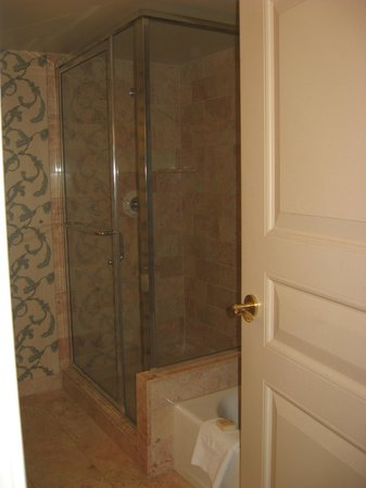 Paris Las Vegas:                   shower