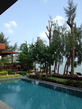 Tri-Shawa Resort:                   敷地はかなり狭い。