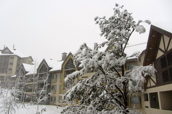 Holiday Inn and Suites Alpensia Pyeongchang Suite:                   snow