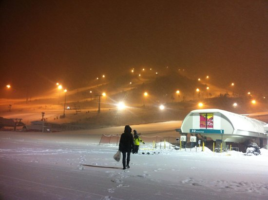 Holiday Inn and Suites Alpensia Pyeongchang Suite:                   slope at night