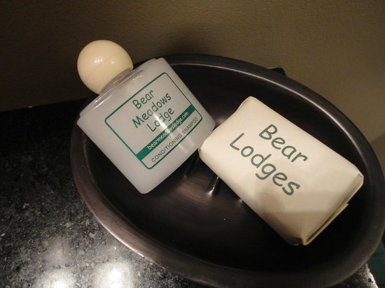 Bear Mountain Lodge:                   Waiting for us in the bathroom at the wilds