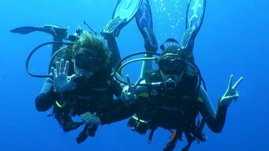 Saba Divers:                   Safety stop. Thanks Piesi for the picture
