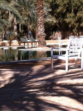 Camp Yadis Ksar Guilane : Vue sur piscine
