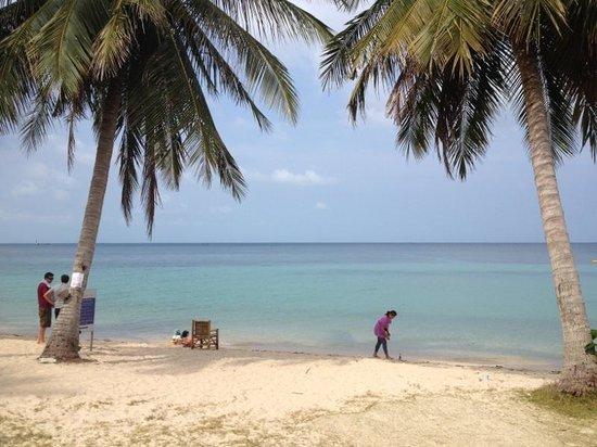 Blue Ocean Garden Beach Resort: Blue ocean garden