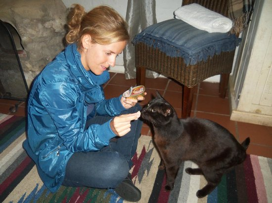 Bamboo the Guesthouse:                   Mona likes the Hungarian goose liver :)