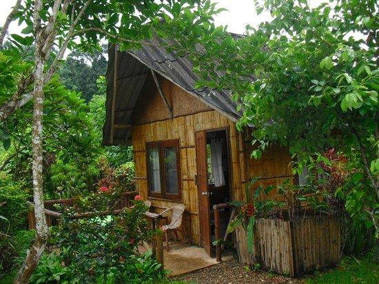 Chiang Dao Nest: Hut
