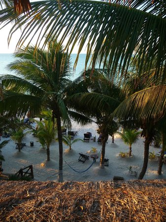 Beachfront Hotel La Palapa:                   Vista desde la habitacion