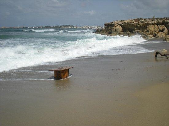 写真ルイス インペリアルビーチ 枚