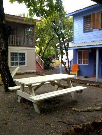 Placencia Villas:                   The courtyard where people hang out.