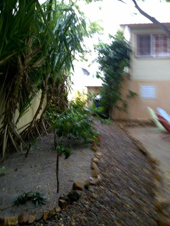 Placencia Villas:                   The path leading from the doorstop of my studio
