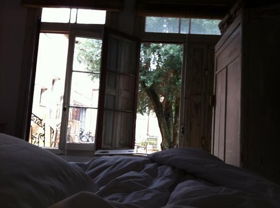 Casa Zinc:                   desde el room