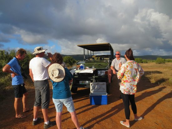 Shamwari Game Reserve Lodges:                   Sundowners at Shamwari Game Reserve