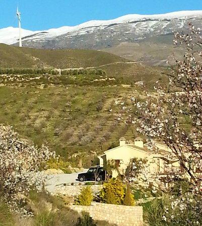 La Finca del Castillo Arabe:                   Looking over La Finca with Sierra Nevada in the background