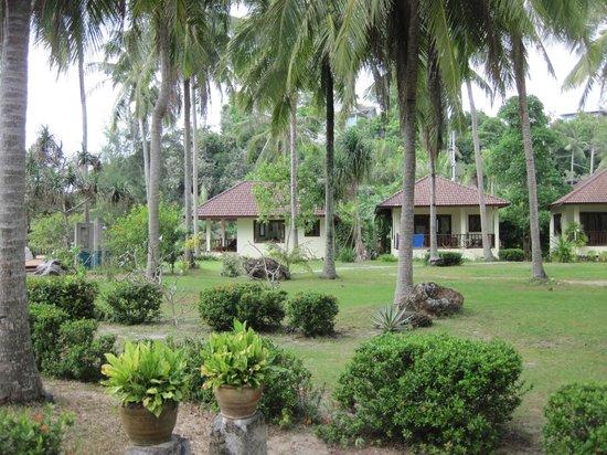 Am Samui Resort:                   A19 on the left