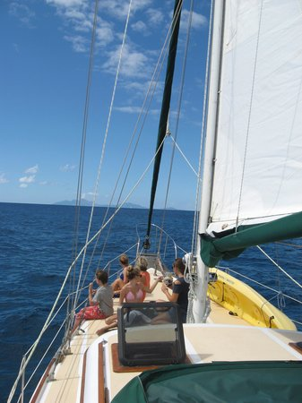Caribbean Charters - Sailing Yacht Ivy :                   Ivy