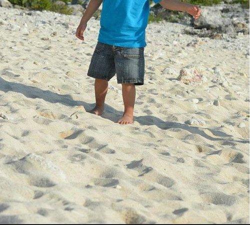 Grand Sirenis Mayan Beach Resort & Spa:                   Plage composée de sable et de morceaux de coreaux