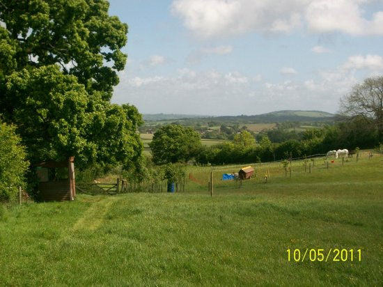Bowes House: View from field