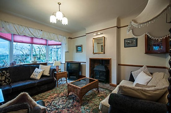 Y Llwyn Guest House: Sitting room with sky television
