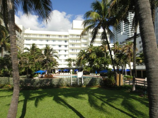 Four Points by Sheraton Miami Beach:                   the hotel and the pool