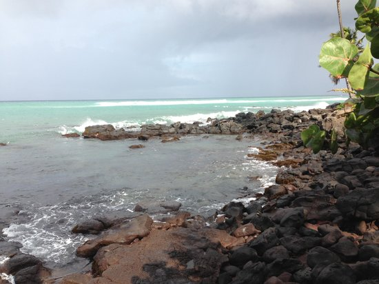 Mahina Surf:                   beach front