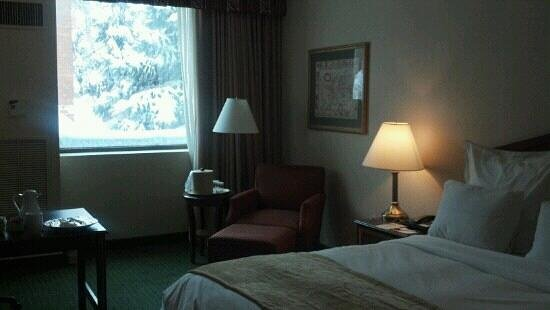 Hartford/Windsor Marriott Airport: Room 117