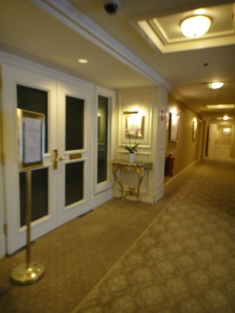 Grand Hotel Wien:                   the hallway