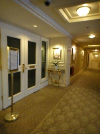 Grand Hotel Wien:                   the hallway                 