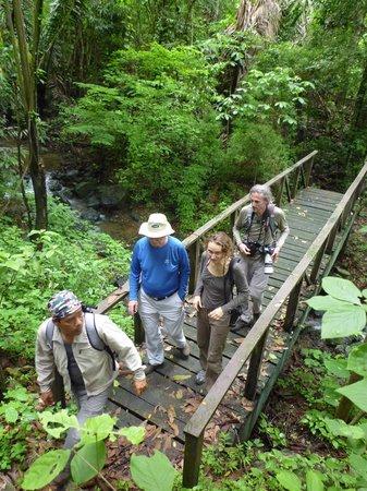 Manglares Churute Mangrove Tours:                   Naturpark Manglares Churute
