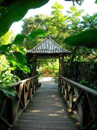 Jardin Cacao Restaurant: Entrance