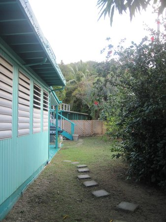 Casita Tropical:                   view of guest house we stayed in (side yard)