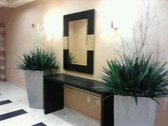 Fairfield Inn & Suites Louisville East:                   Decor by the elevators