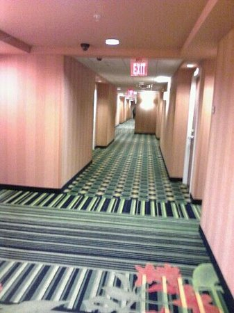 Fairfield Inn & Suites Louisville East:                   Hallway my phone only does this partial justice