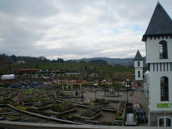 Trago Mills Family Shopping & Leisure Park :                   View from The Towers