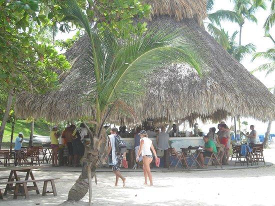 Viva Wyndham Tangerine:                   Bar a samana sur la plage