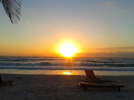 Amelie Tulum:                   Amanecer en el ParaYso...