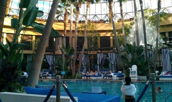 هاراز ريزورت أتلانتيك سيتي:                   the pool                 