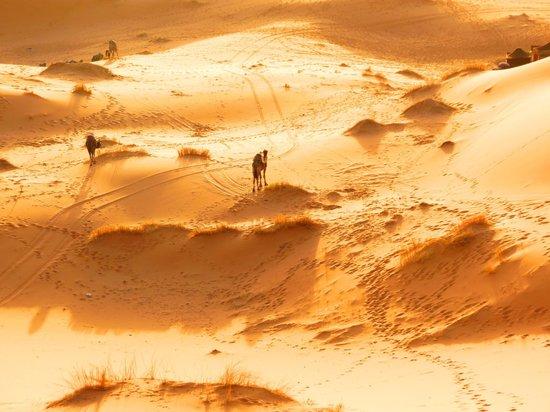 Morocco Sahara 4x4 - Day Tours:                   Deserto
