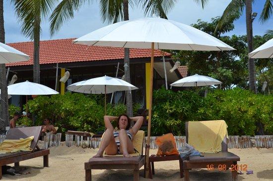 Pinnacle Resort Samui:                   Schirme und Liegen am Strand