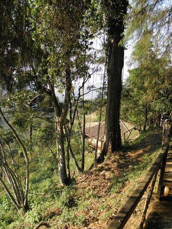Vista Linda Hotel :                   beautiful nature around
