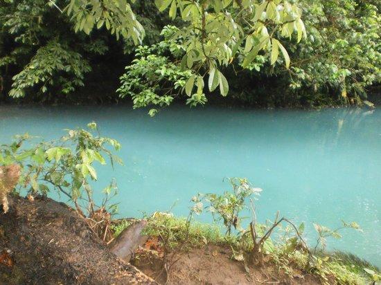Rio Celeste:                   Laguna