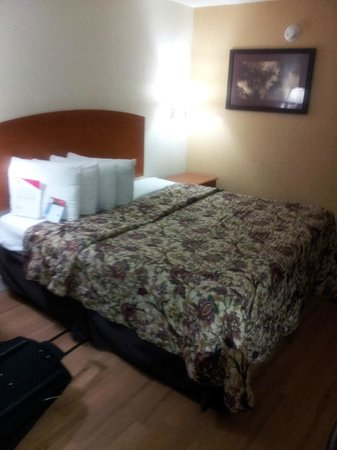 Red Roof Inn Orlando South - Florida Mall:                   Lots of pillows King Bed