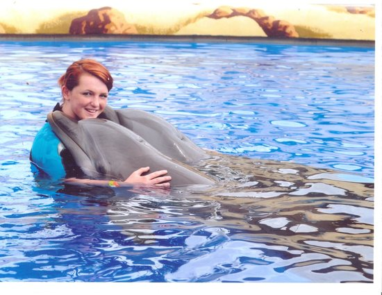 Aqualand Costa Adeje: cuddles with dolphin in training pool