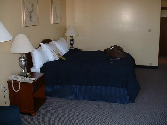 DoubleTree by Hilton Berkeley Marina: bed
