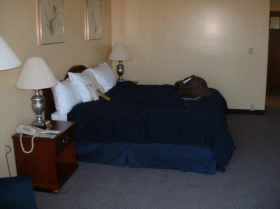 더블트리 호텔 앤드 이그저큐티브 미팅 센터 버클리마리나 사진